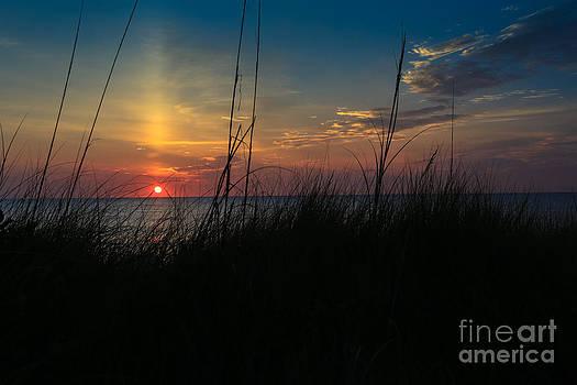 Beautiful Morning by Brenda Schwartz