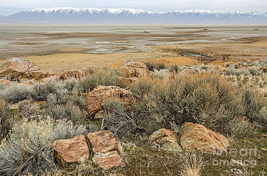 Beautiful Rocks at the Great Salt Lake by Sue Smith