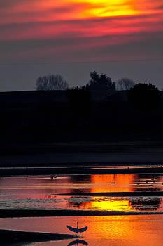 Beautiful Sun Set on the Lake by Brian Williamson