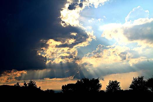 Beautiful Sunrays by Candice Trimble