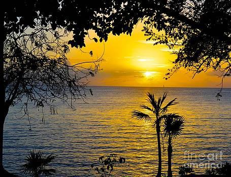 Beautiful Sunset by Debbi Granruth