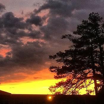 Beautiful Sunset by Shari Malin