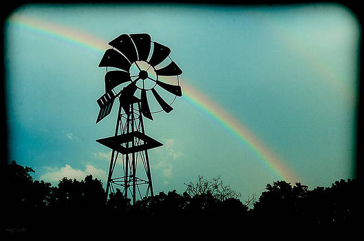 Beauty After the Storm by Shirley Tinkham