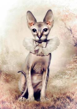 Beauty by Cindy Grundsten