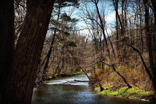Beauty in the Backwoods by Jessica Grandall