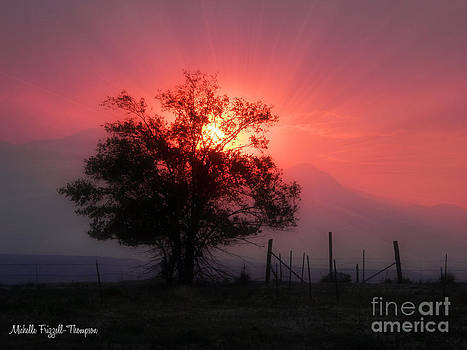 Beauty of Sunset by Michelle Frizzell-Thompson