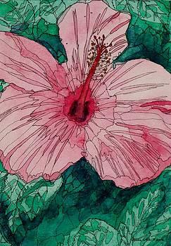 Beauty On Display by Donna Whitsitt
