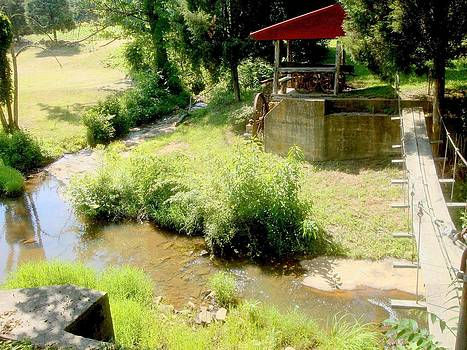 Beaver Creek by Bill Talich