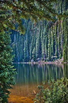 James Woody - Beaver Lake