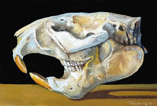 Catherine Twomey - Beaver Skull 1