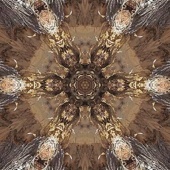 Beaver's Work Two by Trina Stephenson