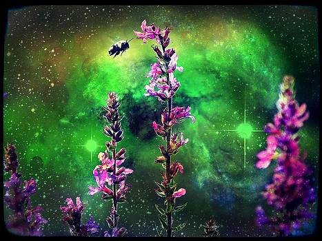 Bee Against The World by Christina Shaskus