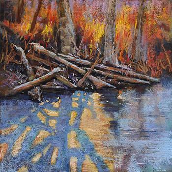Bee Creek Light by Cristine Sundquist
