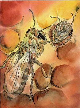 Bee by Rosemarie Franco-Bell