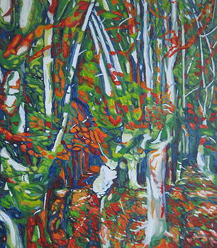 Beech Trees by Enrique Ojembarrena