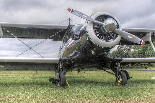 Howard Markel - Beechcraft Staggerwing