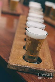 Beer Tasting In A Micro Brewery by Gillian Vann