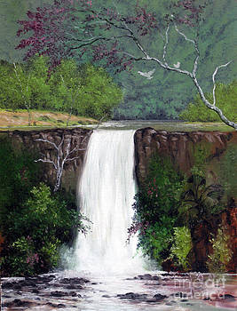 Before A Waterfalls by Anup Roy