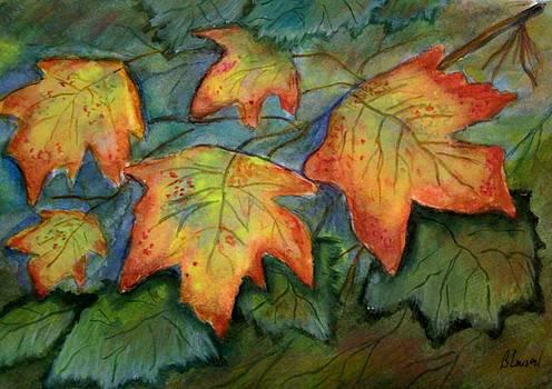 Beginning Fall  Leaves by Belinda Lawson