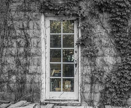 Behind the Glass Door by Julie Basile