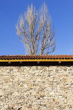 Ramunas Bruzas - Behind The Wall