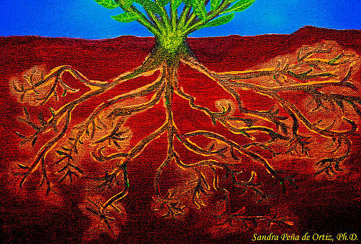 Sandra Pena de Ortiz - Being Rooted and Grounded in My Good Soil