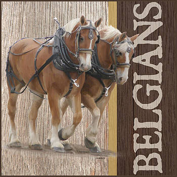 Belgian Draft Horses by Bethany Caskey