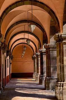 Bellas Artes San Miguel de Allende by Nicola Fiscarelli