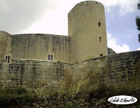 Bellver Castle In Palma De Mallorca by Cibeles Gonzalez