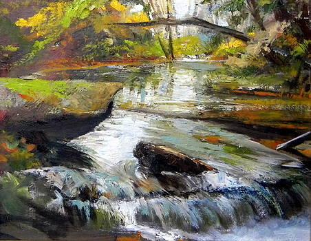 Below the spillway by Mark Hayden
