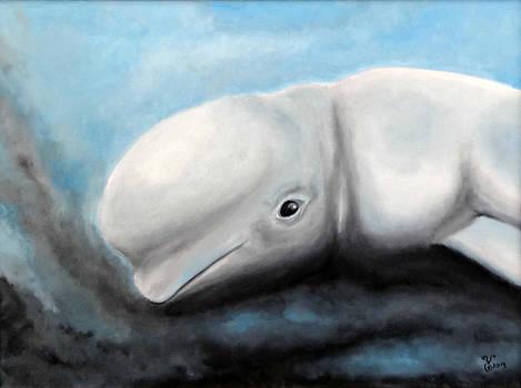 Beluga by Yabette Swank