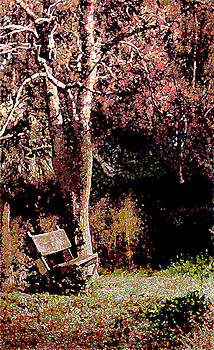 Bench and Tree by Daniel Bonnell