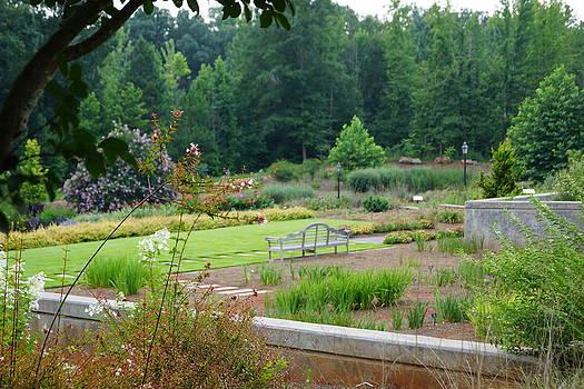 Angela Hansen - Bench at Botanical Gardens