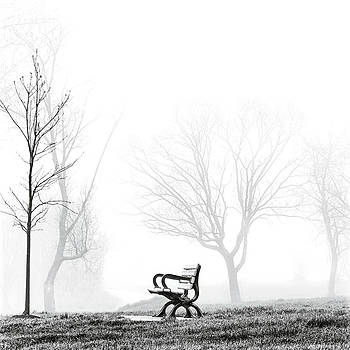 Bench by Brian Carson