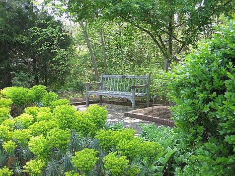 Angela Hansen - Bench in Green Garden