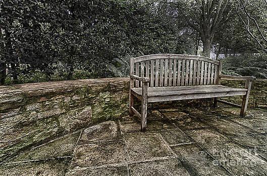 Danny Hooks - Bench in the Garden
