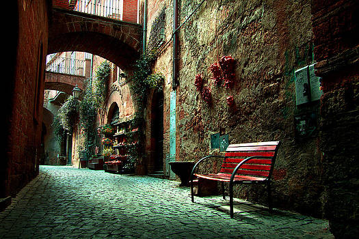 Bench in Tuscany by Toma Bonciu