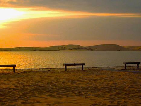 Benches by the beach by Danielle Allard