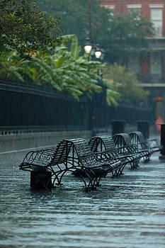 Benches in the Rain by Susie Hoffpauir