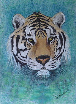 Bengal Tiger in water by David Hawkes