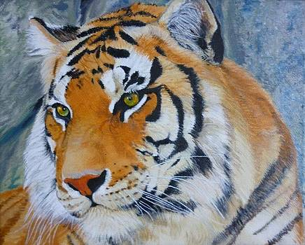 Bengal Tiger Original Oil Painting by Pigatopia by Shannon Ivins