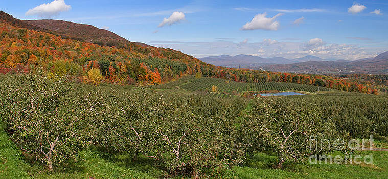 Charles Kozierok - Bennington Valley from the Orchard