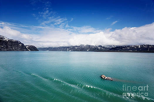 Jo Ann Snover - Bergy bit floats by