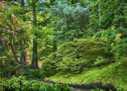 Jan Hagan - Berkeley Botanical Garden Horizontal