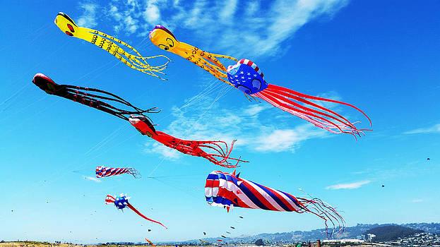 Berkeley Kite Festival 1 by G Matthew Laughton