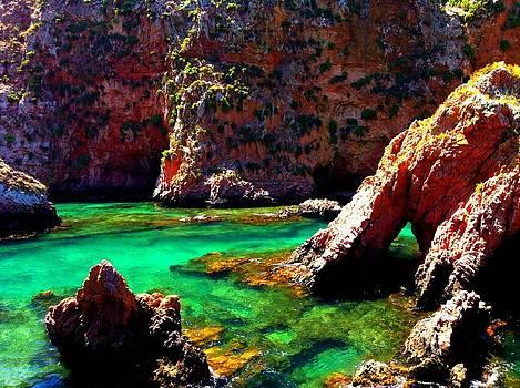 Alexandre Martins - Berlengas Island I