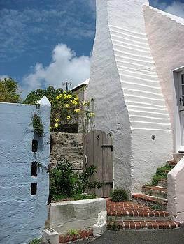 Bermuda 1 by Paul Thomas