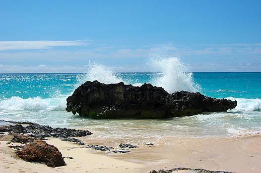 Bermuda 4 by Paul Thomas