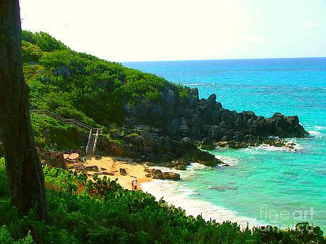 Bermuda Beach by Judy Palkimas