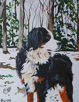 Bernese Mountain Dog by Veronica Silliman